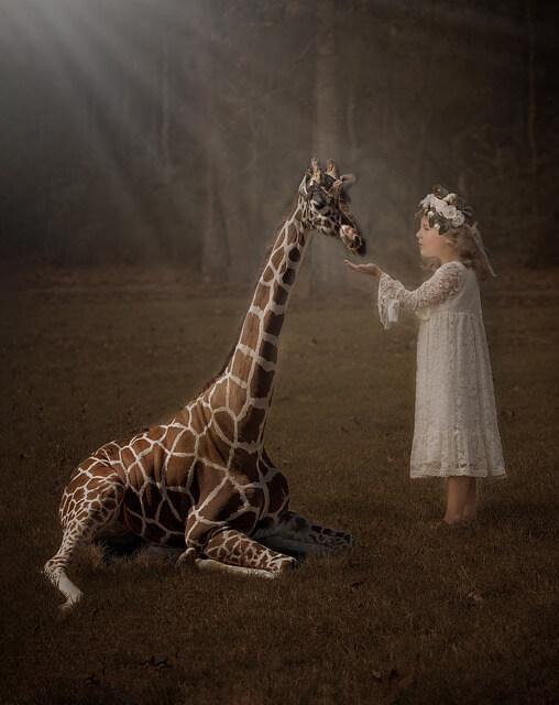 キリンと少女
