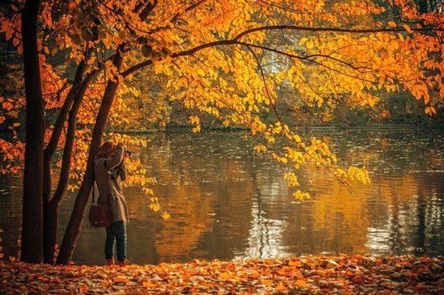黄金色の木々の湖畔