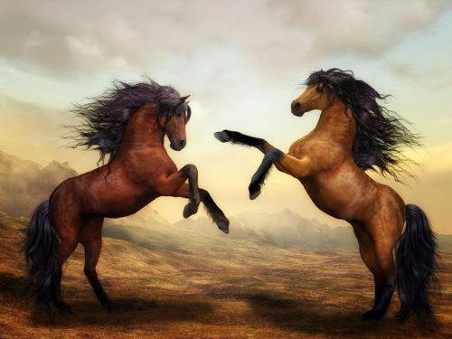 跳ね上がる二頭の馬