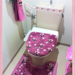 【北トイレ】の風水*その不調、メンタルストレス…もしかしてここが原因?