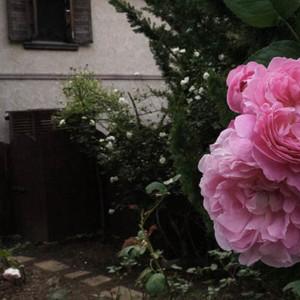 【北玄関】の風水*内なる心の「さみしさ」に光を灯し愛と信頼へ導くために